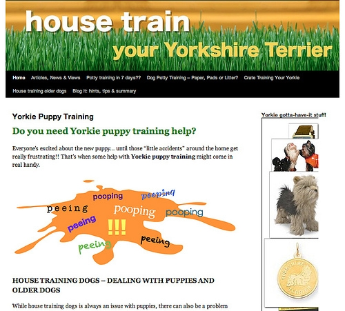 Potty Training Tips For Puppies And Older Yorkies