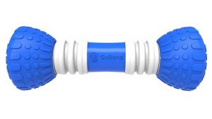 GoBone Interactive App-Enabled Smart Bone