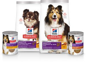 Hill's Science Diet Adult Sensitive Stomach & Skin Small & Mini Breed Chicken Recipe Dry Dog Food