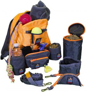 Doggie Travel Bag Dog Backpack