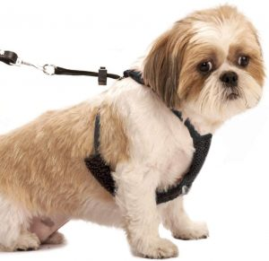 Easy Step-in Adjustable Mesh Harness
