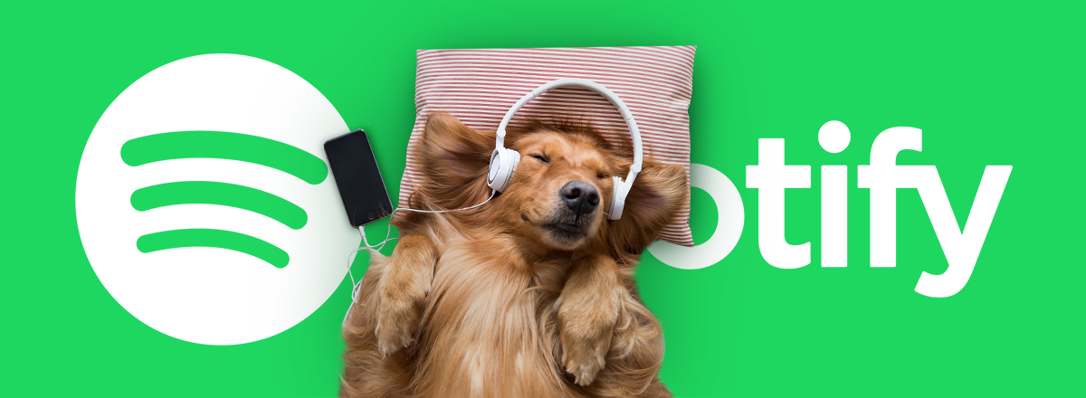 Dogs and Spotify