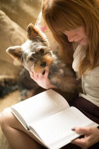 Yorkie and a book